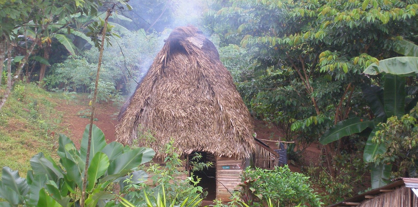 Jungle Camp Training with New Tribes Mission