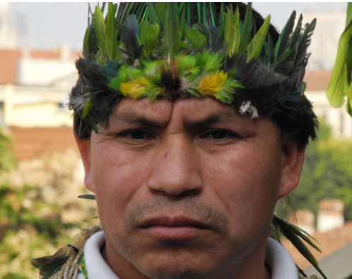 Pope apologizes for Catholic church's crimes against indigenous peoples – Survival International