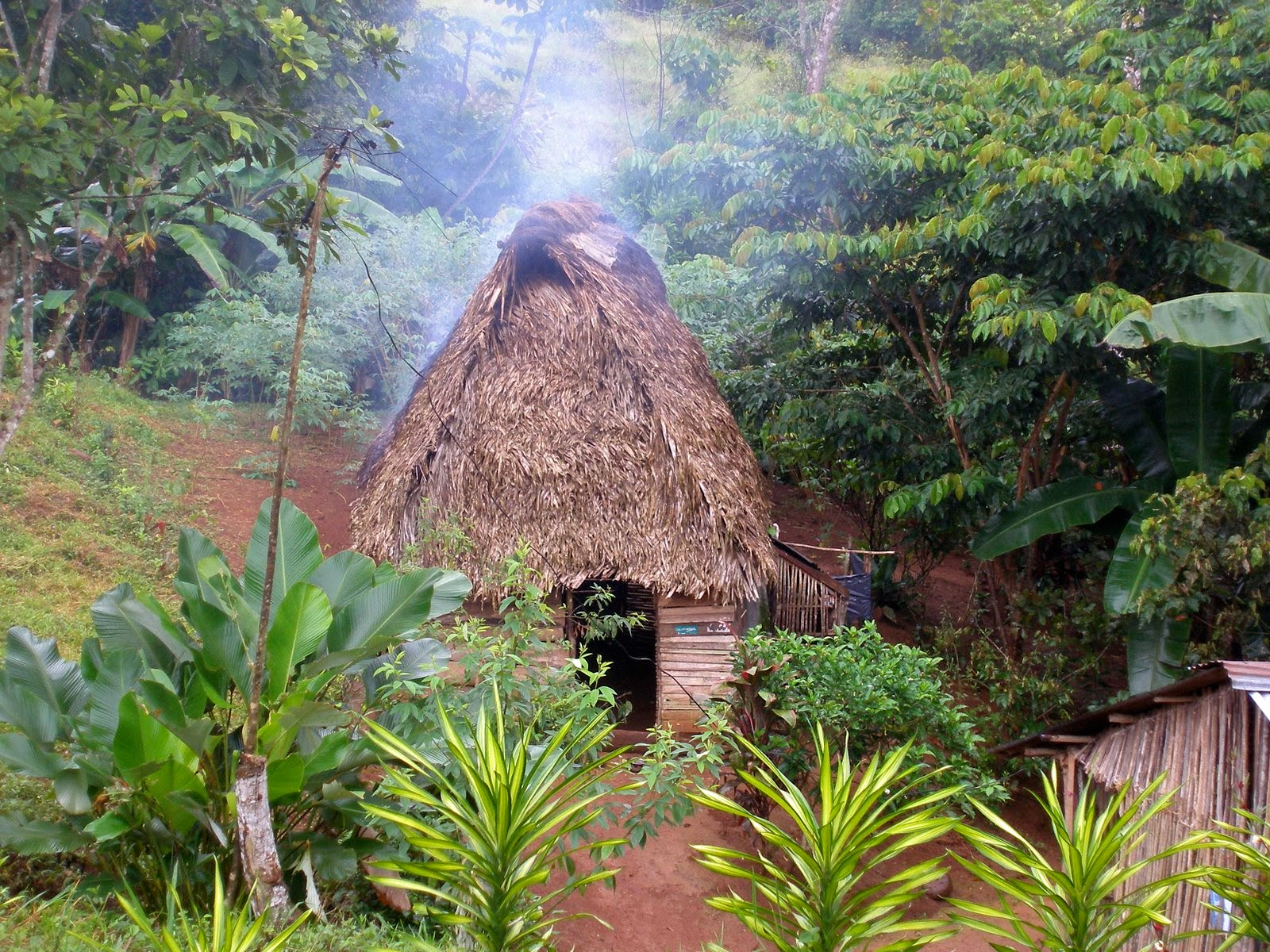 The Great Commission and the Endangered Languages of Costa Rica